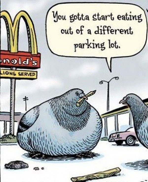 You gotta start eating out of a different parking lot....