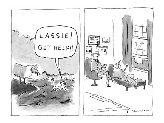 You can always count on Lassie to