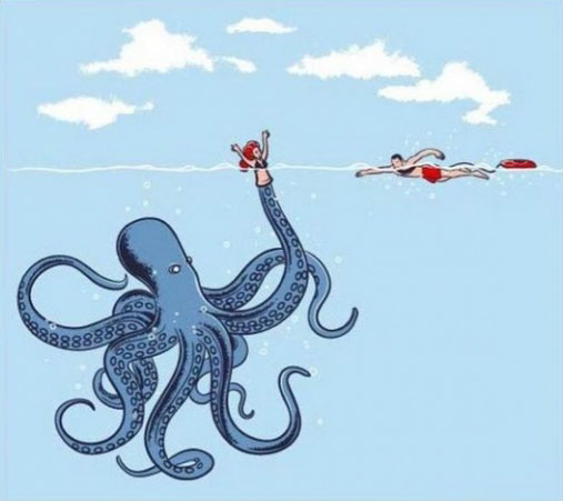 They do say that the Octopus is very intelligent...