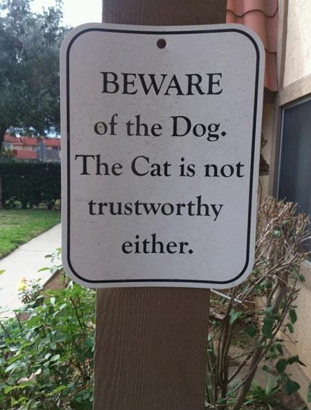 Beware of the dog... the cat is not trustworthy either