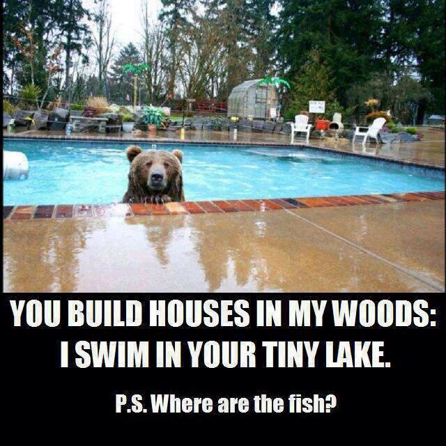 You build houses in my woods?  I swim in your tiny lakes...
