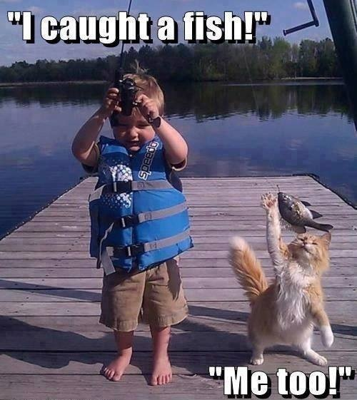 I caught a fish... Me too!