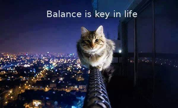 Balance is the key in life...