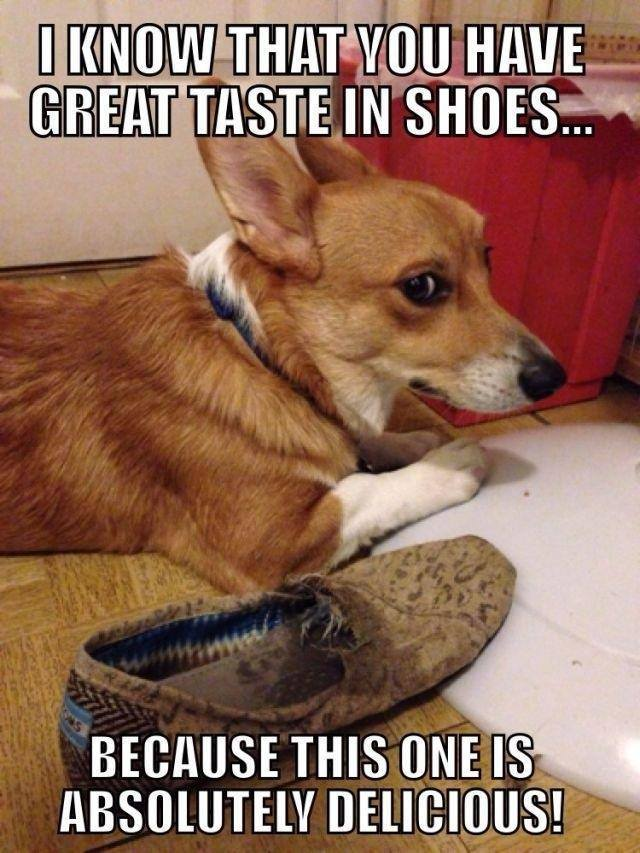 I know that you have great taste in shoes...