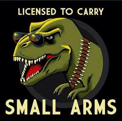 Licensed to carry small arms...