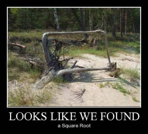 Looks like we found a square root...